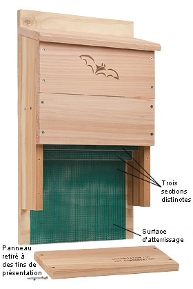 nest boxes a bat